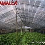 malla sombreadora para cultivos