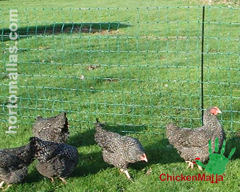 As redes CHICKENMALLA® são resistentes ao pH dos excrementos das aves