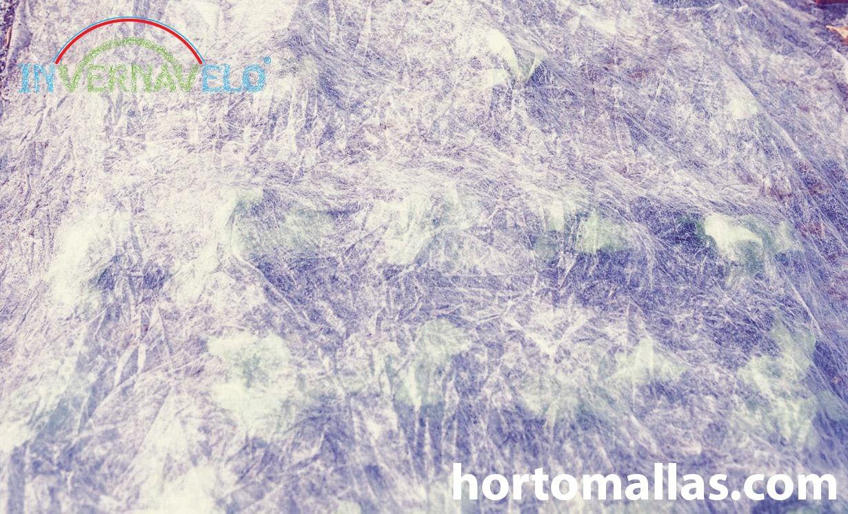 Não perca sua colheita devido às baixas temperaturas, use a tela-térmica INVERNAVELO