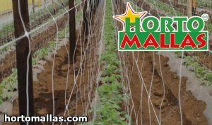 Malla soporte de hortalizas