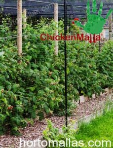 CHICKENMALLA can also installed on small crops