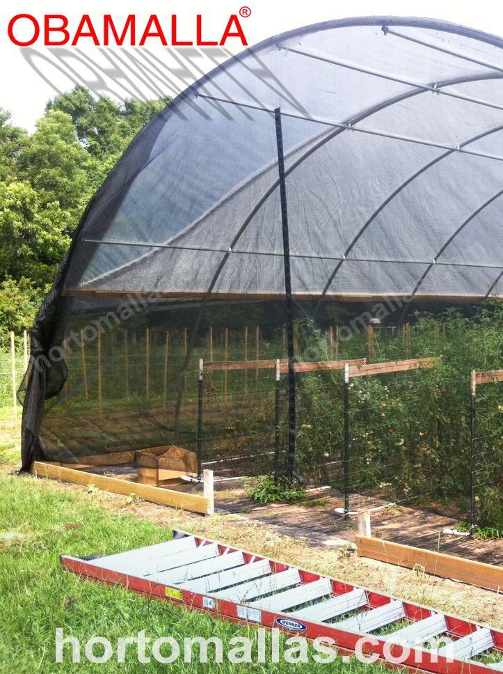 A malha/rede de sombreamento OBAMALLA® em casa de sombra com forma de túnel, protege e facilita o acesso a seus cultivos