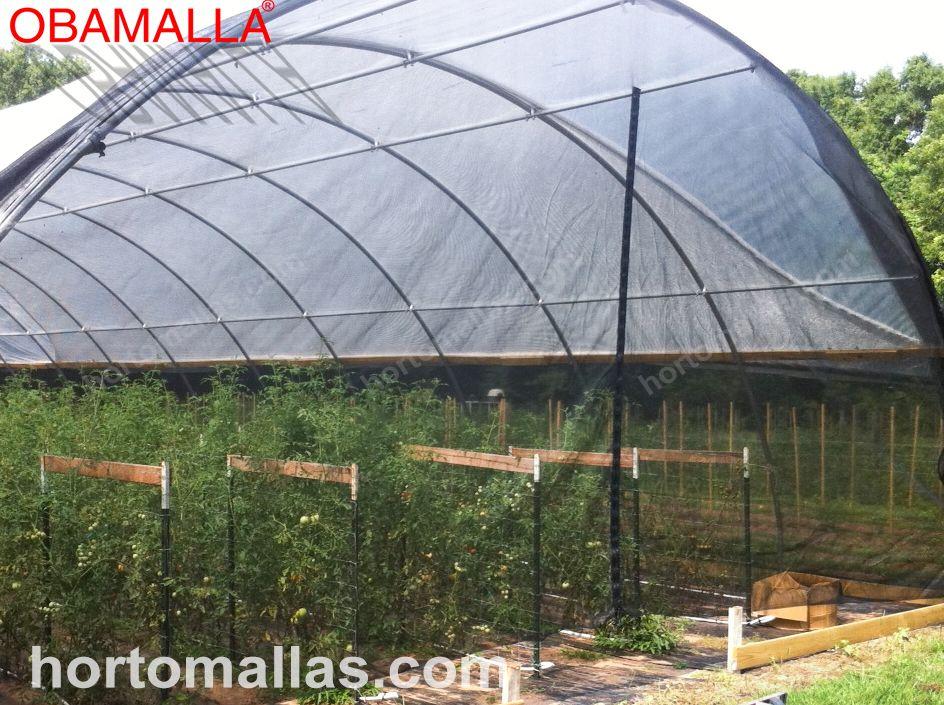 Casa de sombra feita com malha/rede para sombreamento OBAMALLA®, seus cultivos serão altamente beneficiados.