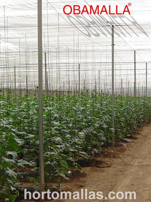 Com postes estrategicamente colocados, podem suportar grandes extensões de malha/rede para proteger seus cultivos dos raios UV