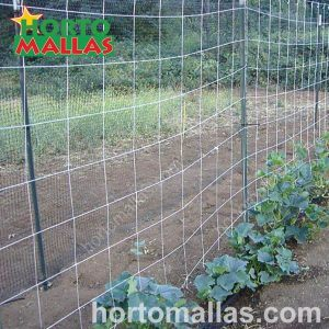 Setting up of HORTOMALLAS cucumber trellises in a small cultivation