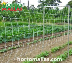 vegetable support net and a U frame stake