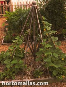 Cucumber plant support made out of recycled materials