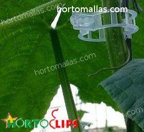 O clipe ajuda o caule/talo da sua planta a não se encurvar, evitando a exposição no solo.