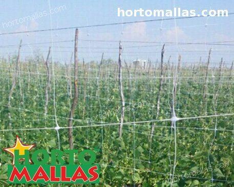 sistema di supporto verticale utilizzato nel campo di coltura