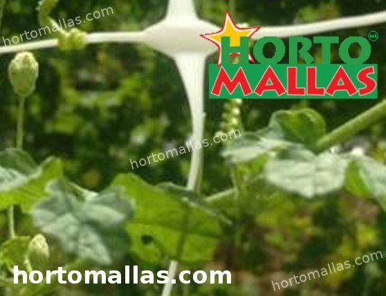 HORTOMALLAS supporta la rete installata fornendo supporto alle piante