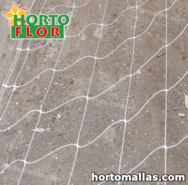 O uso da rede Hortoflor resulta ser um método melhor para o suporte/apoio das flores que o uso de redes metálicas.