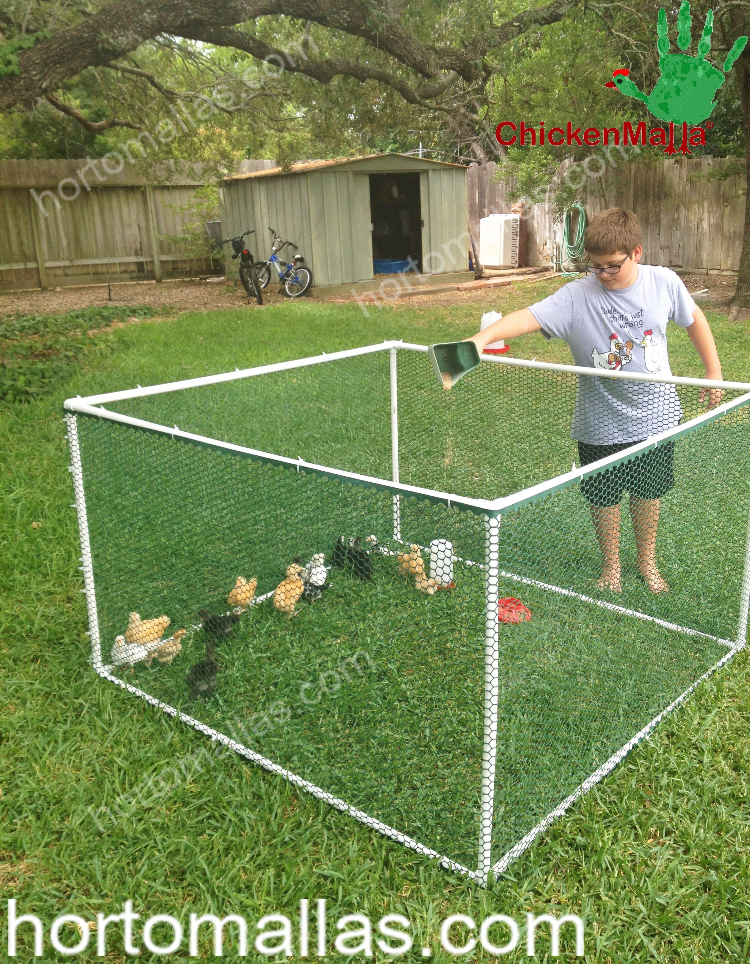Podem ser criadas capoeiras, muito facilmente, com a malha/rede CHICKENMALLAS para galinhas/frangos.