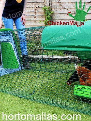 Criação de galinhas/frangos com malha/rede multiusos.