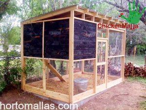 chicken coop with chicken netting