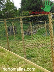 poultry nets and chicken netting for pens and small animals in a farm