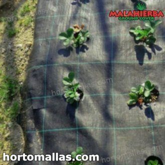 mulch cloth usen in crops