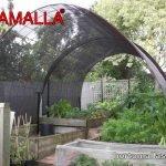 malla sombreadora para cultivos de hortalizas