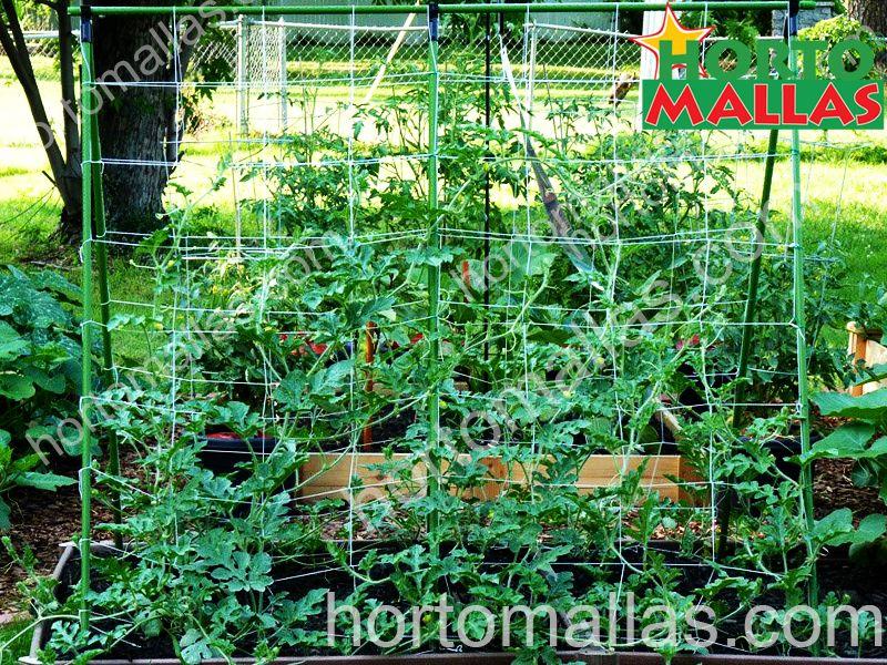 sistema di supporto verticale sui fiori