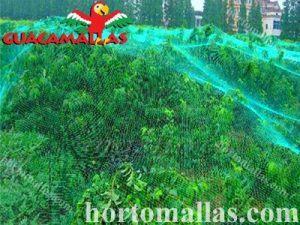 La red de control de aves GUACAMALLAS se puede aplicar fácilmente directamente sobre los árboles