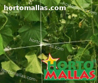 HORTOMALLAS® supporta la rete fornendo supporto alle piante