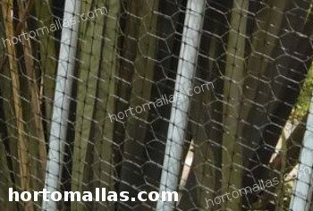 chicken wire used in home