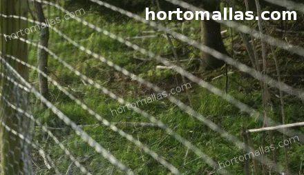 deer fence installed in garden