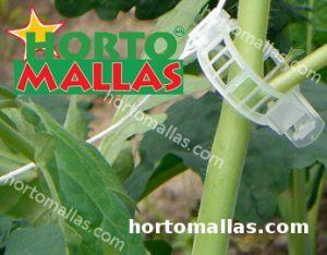 clip de tomate instalado en tallo de planta de pepino
