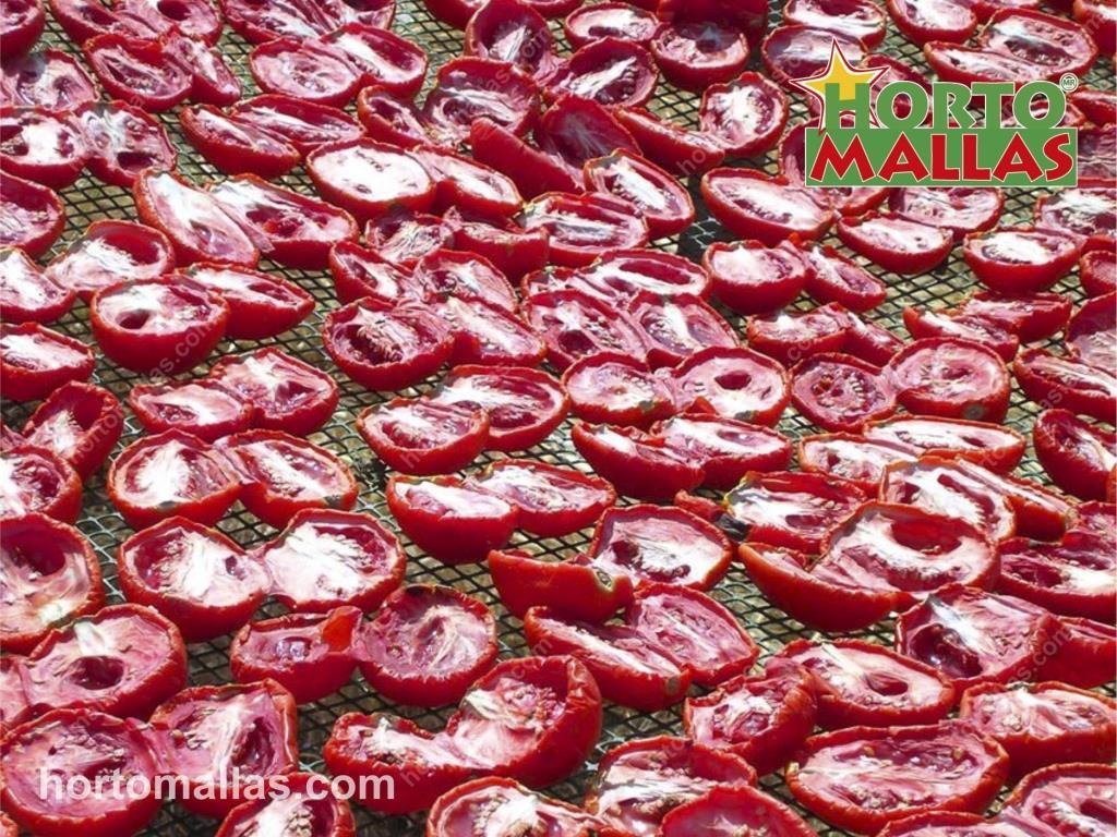 Fotos de MULTIMALLA tela criba como Secado de Alimentos