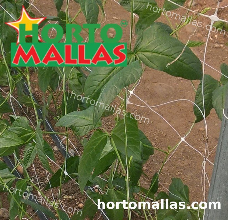 vertical support mesh apply in crops