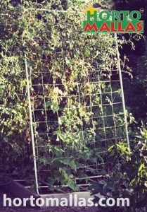 meta wire mesh as plant support