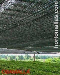 OBAMALLA® in cropfield