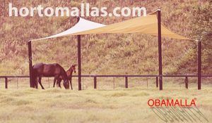 wing type stade netting for horses
