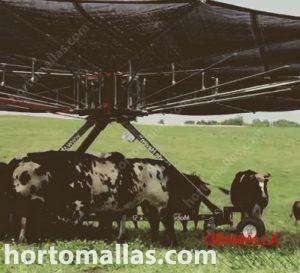 sombreado móvil para ganadería