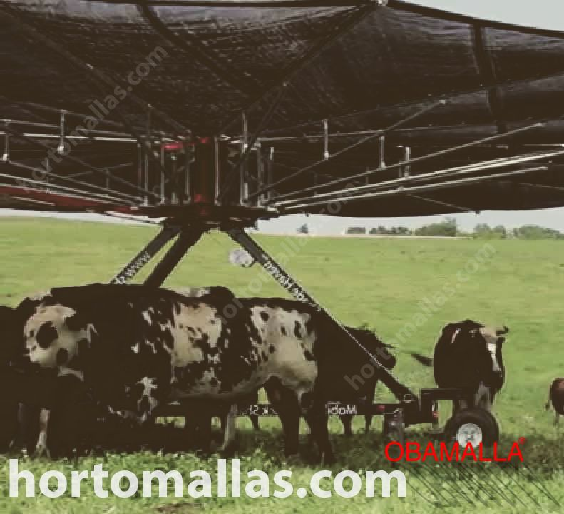 Shading net for livestock: animals suffer from excess heat. Learn how to avoid heat stress and improve production.