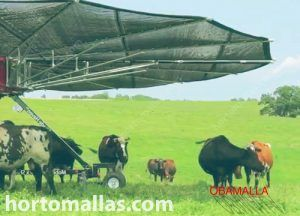 umbrella shaped solar control net