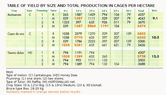 table of yield by size and total production in cages per hectare