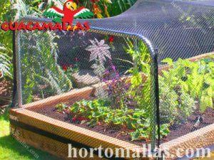 bird nets used against butterflies
