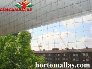 bird netting installed on buildings in a city
