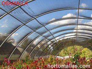 macro túnel con media sombra en cultivo de flores