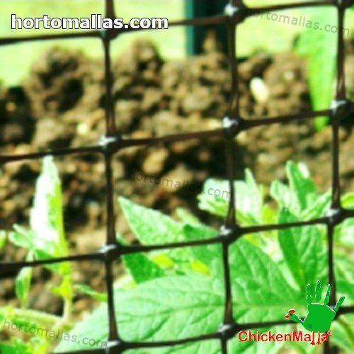 chicken net installed on garden