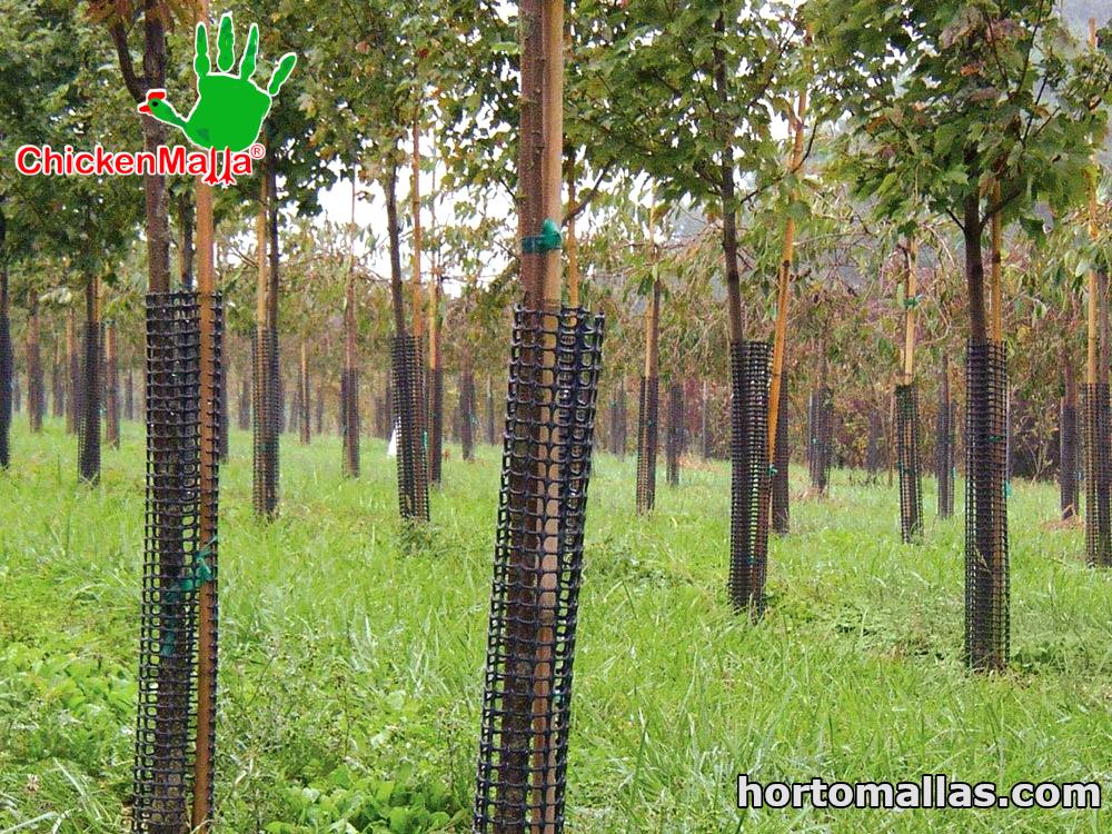 Malla para uso forestal CHICKENMALLA® se puede utilizar para proteger totalmente el árbol