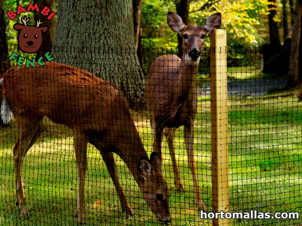 Keep Deer And Other Animals Away From, How To Keep Deer Out Of Vegetable Gardens