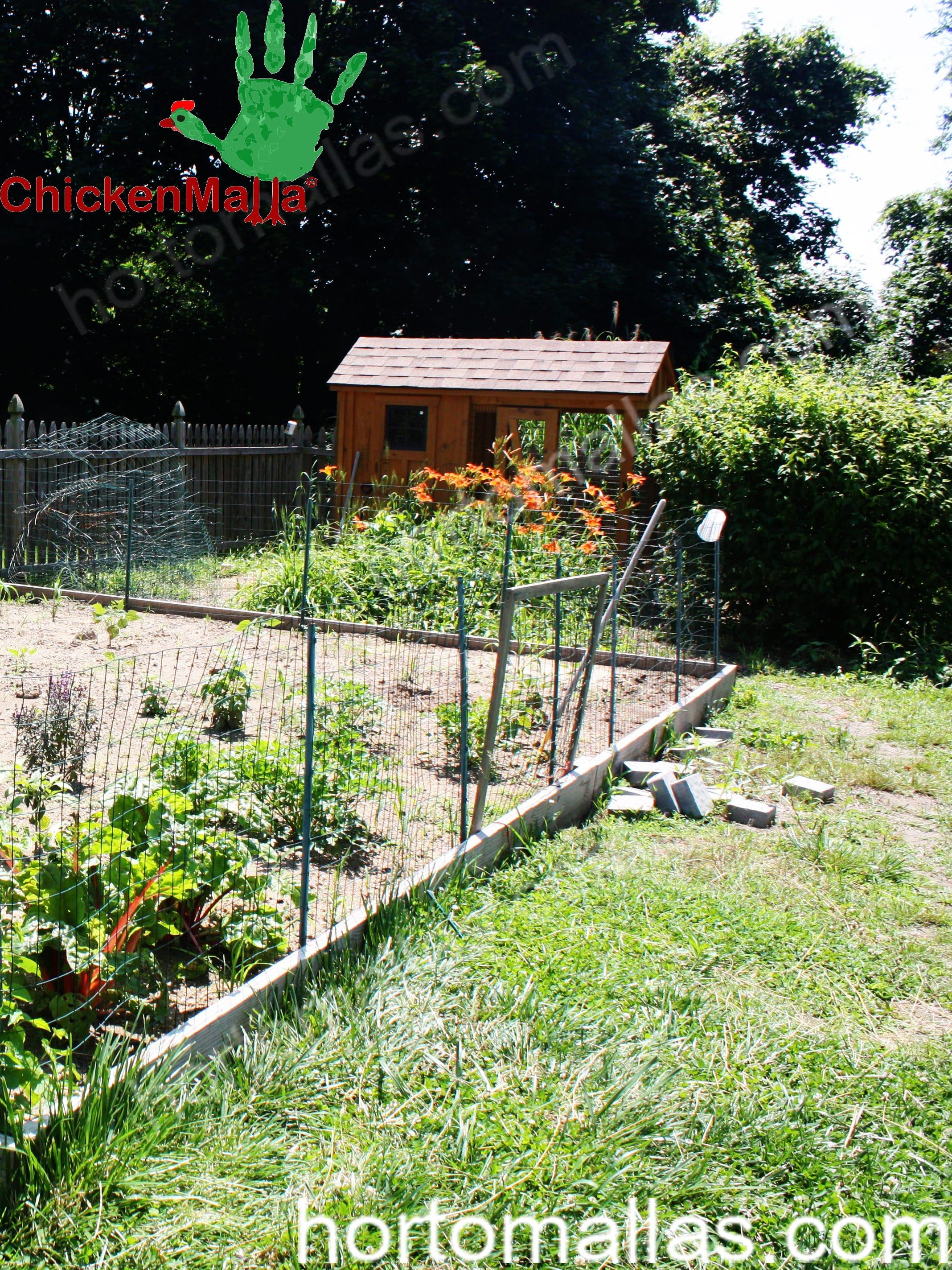 jardín con uso de CHICKENMALLA