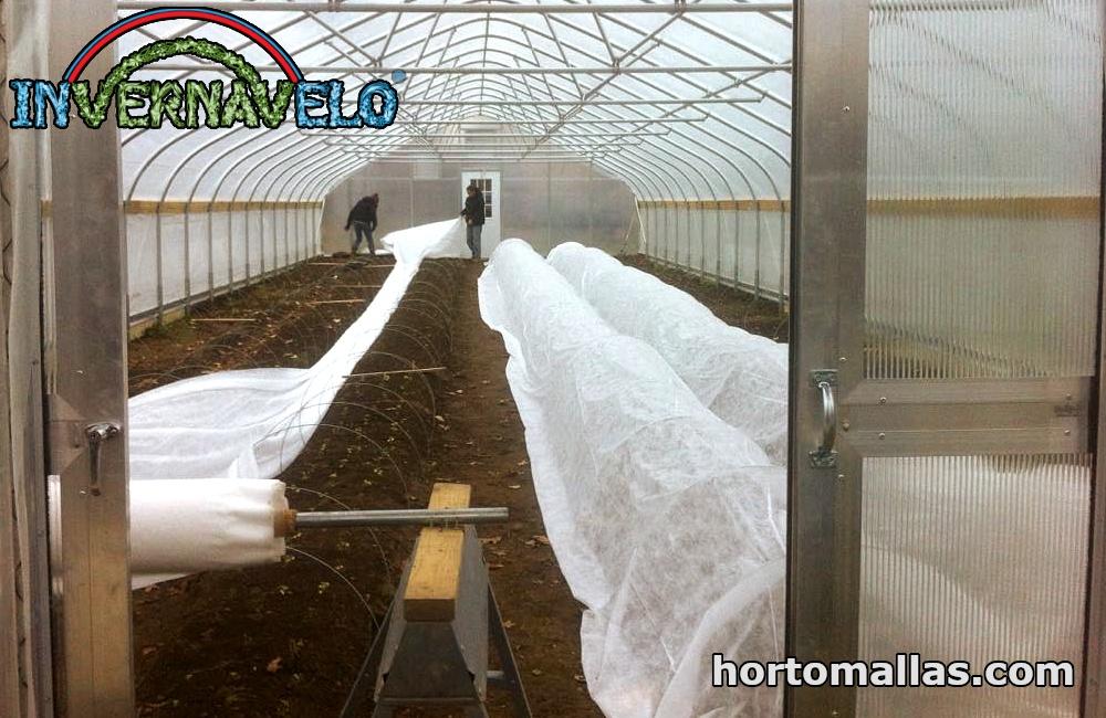 micro-túneles en invernadero