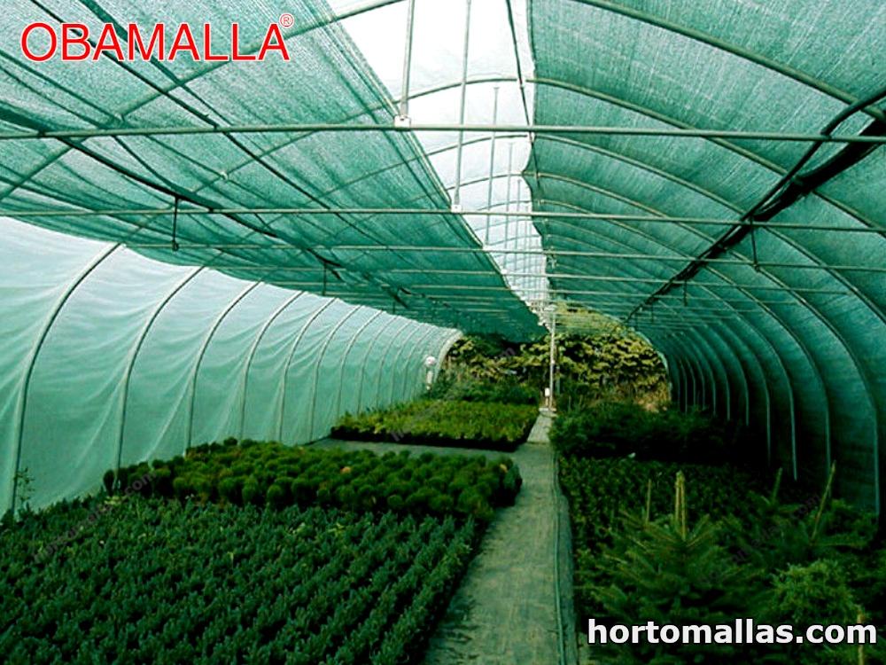 cultivos protegidos con malla de sombreamiento verde