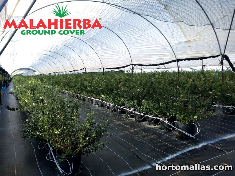 Prevent weeds from absorbing nutrients from your crop with Ground-Cover mesh.