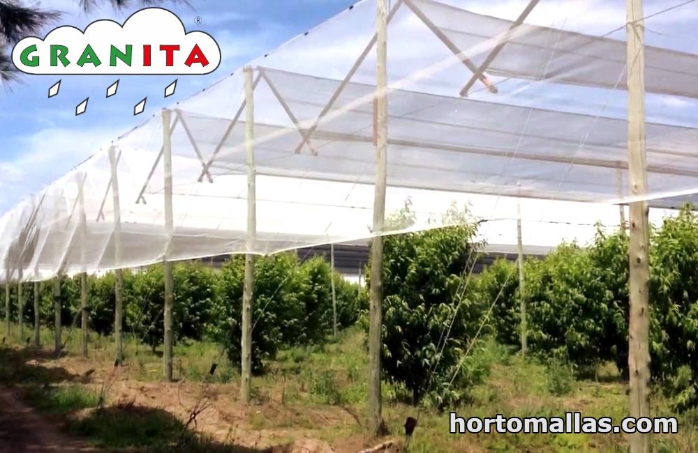 Anti-hail netting prevents hail damage by holding off hail strikes.