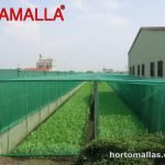 malla para horticultura