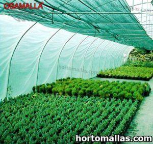 cultivo protegido con malla sombra verde OBAMALLA