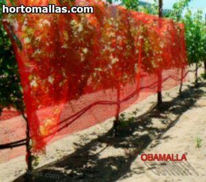 malla sombra rojas colocadas sobre arboles
